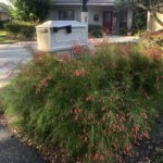 Linda Thomas Inverness Fl Real Estate Mailboxfirecracker