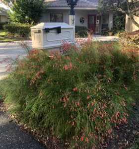 Linda Thomas Inverness Fl Real Estate Mailboxfirecracker