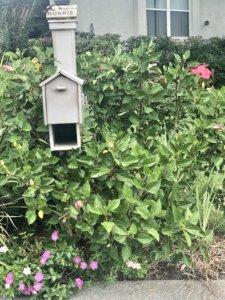 Linda Thomas Inverness Fl Real Estate Mailboxhybis